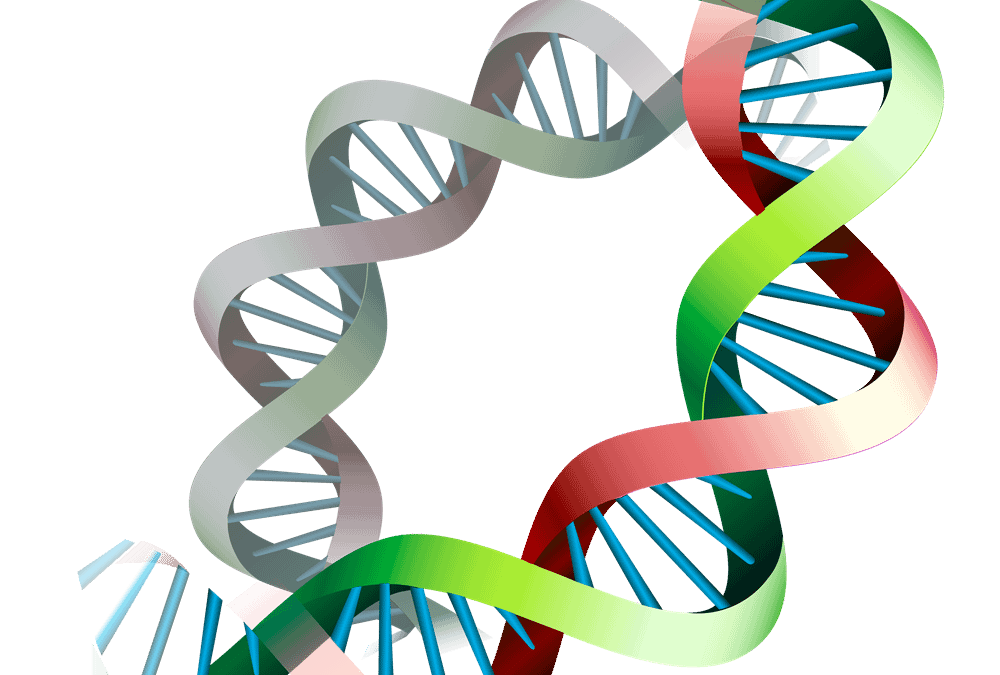 Why DNA Nutrition Tests are Instrumental for Pregnancy