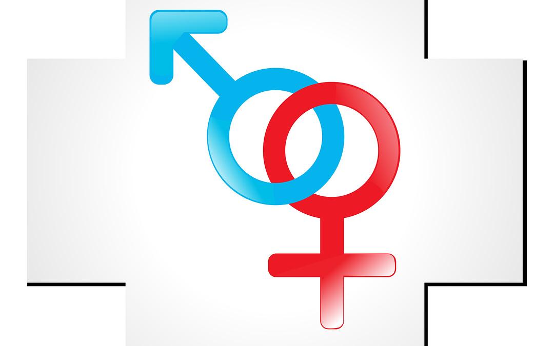 Topic 3: Estrogen and Testosterone's Influence on Antioxidant Status