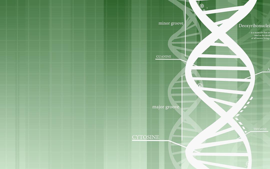 Topic 2: Introduction to Nutrigenomics and Epigenetics