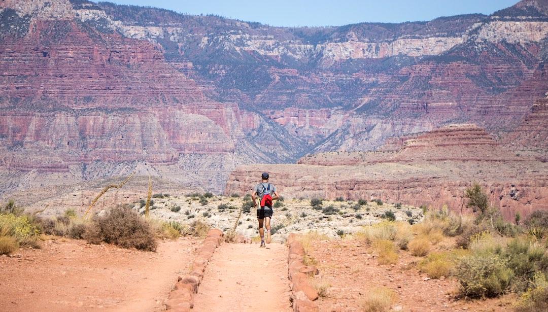12 runner desert