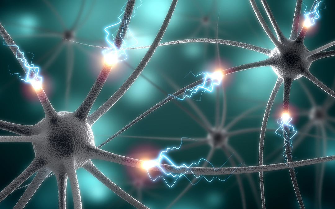 The Most Effective Strategies for Alzheimer's Disease and APOE